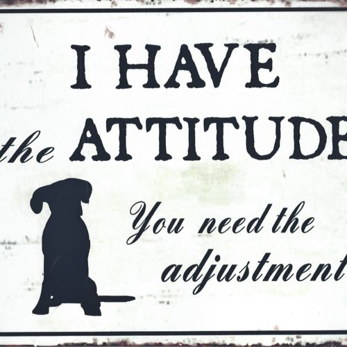 Tekstbord I have the attitude you need the adjustment