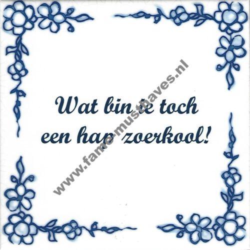 Tegeltje Deventers dialect Wat bin ie toch een hap zoerkool