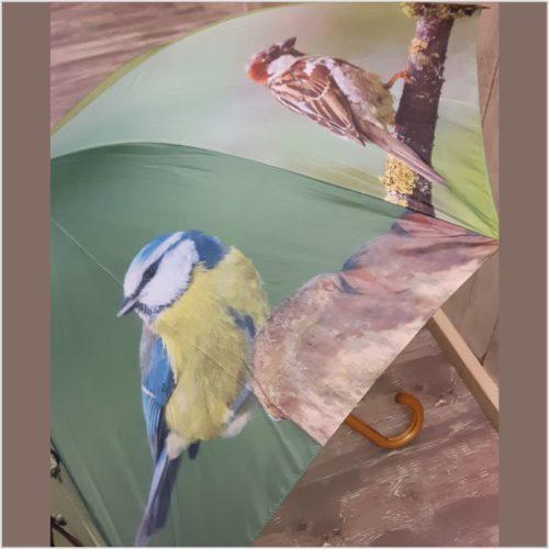 Paraplu diverse vogel soorten van Esschert design