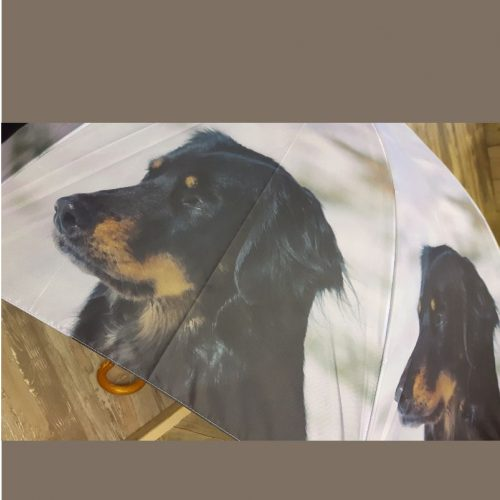 Paraplu hond teckel van Esschert design