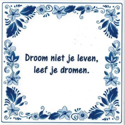 Spreuk tegel Droom niet je leven leef je dromen