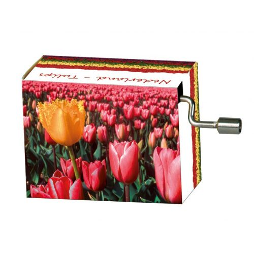 Muziekdoosje Holland tulpen melodie Spring van Vivaldi