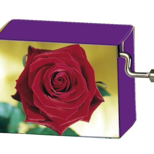 Speeldoosje bloemen rode roos met melodie Happy Birthday