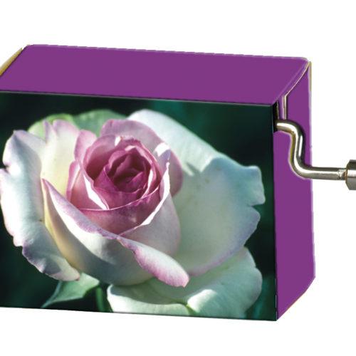 Speeldoosje bloemen roze roos melodie La vie en rose