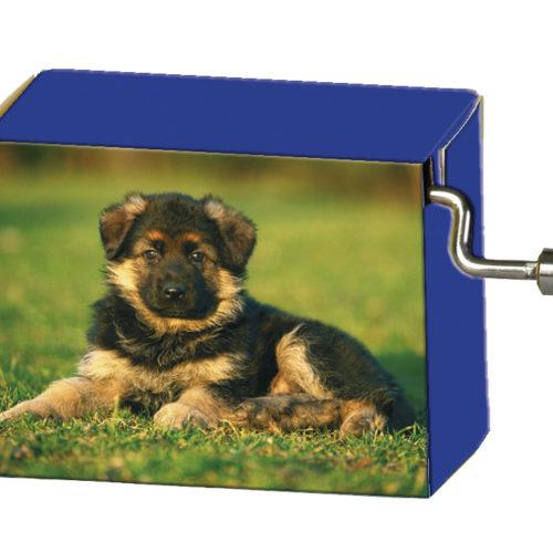 Speeldoosje dieren Hond in het gras met melodie Old McDonald