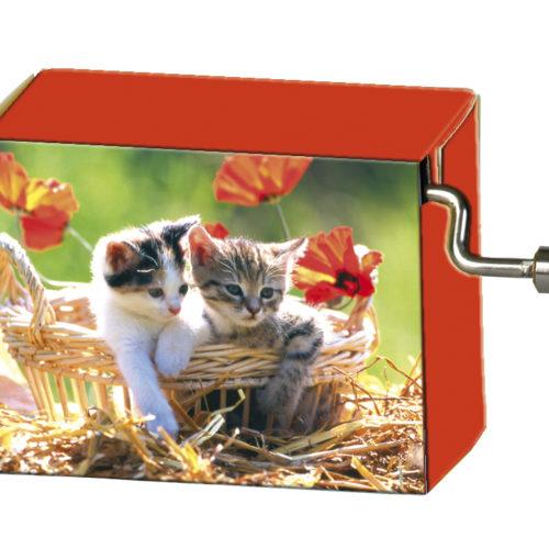 Speeldoosje dieren kittens in mand met melodie LaLeLu