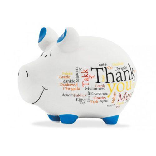Spaarpot spaarvarken bedankt en thank you in wit en blauw