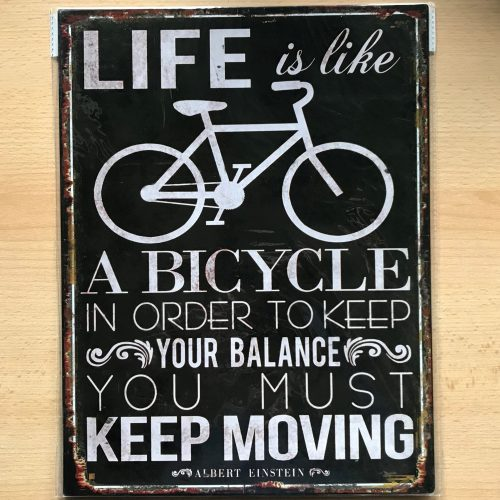 Metalen tekstbord tekst van Einstein life is like a bicycle